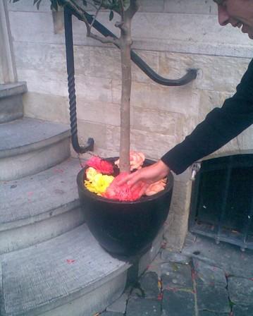 de begonia van karl marx in brussel